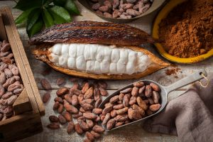 raw-cacao-toxic