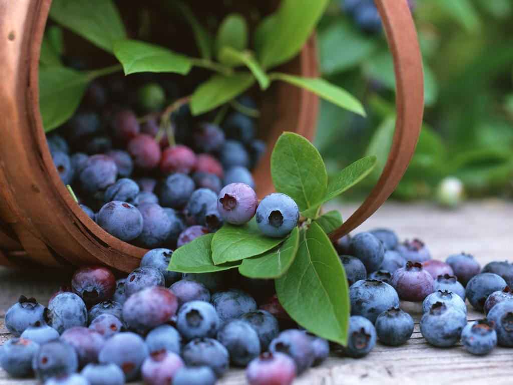 fruitdiabetes