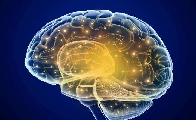 dha-brain-health