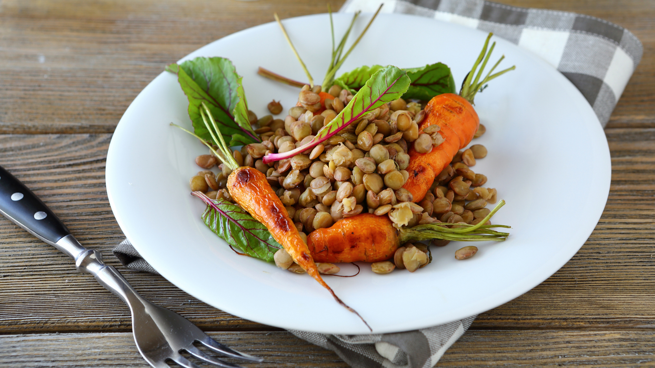 plant-based-meal-plan-weight-loss
